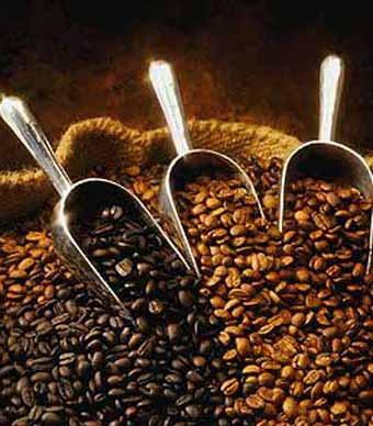 القهوة ستخلصك الدهون المترهلة للأبد 12664_large.jpg