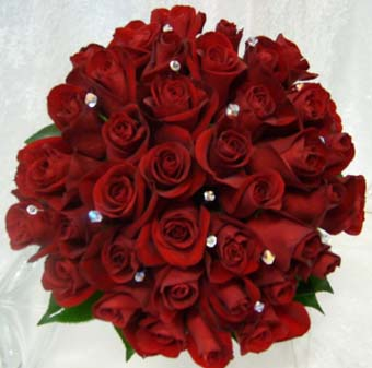 الورود الحمراء - ورد احمر ورة حمراء